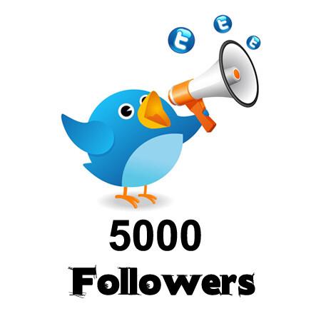 twitterfollowers5000